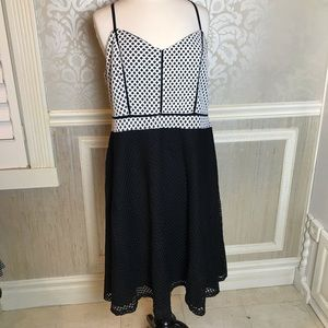 City Chic NWT M/18 black and white gorgeous A-line